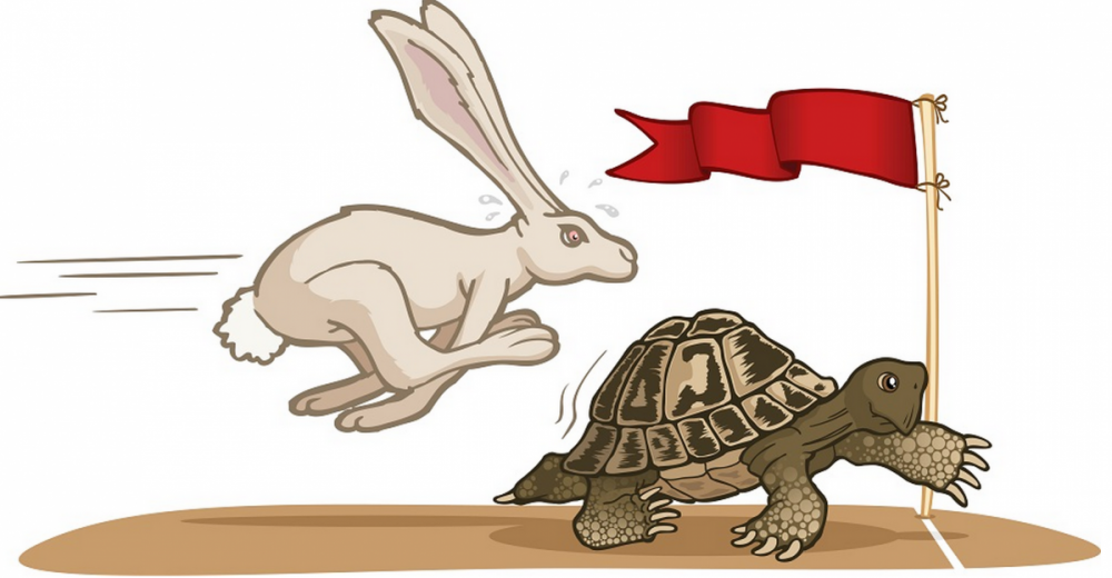 Tortoise-And-The-Hare_Jpg_9